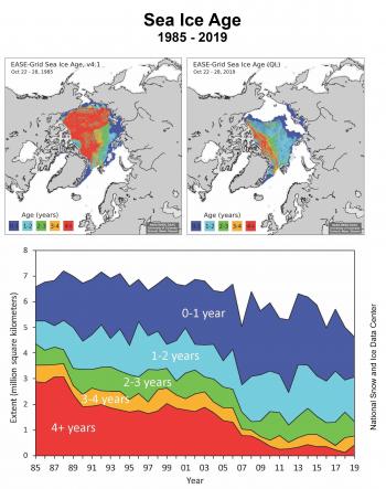 La banquise arctique est de plus en plus mince, formée de glace de moins en moins âgées et couvre une part de plus en plus réduite de l'océan.